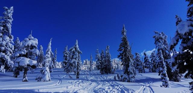 Garibaldi Provincial Park im Winter flickr (c) metaphoricalplatypus-com CC-Lizenz